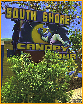 Canopy Tour :: South Shore